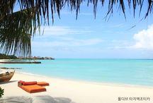 여행/신혼여행 travel & honeymoon / 월간웨딩21 웨프 http://wef.co.kr
