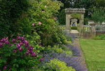 Wiston House Gardens / Discover our beautiful gardens throughout the seasons