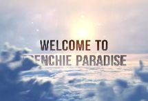 Introduction To Frenchie Paradise