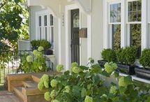Front Stoop/Garden