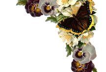 Flores Decoupage
