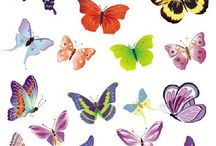 aaa butterflies and other tiny pretties