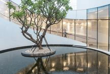 water&tree