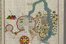 Вселенная средневековья / Рукописи, манускрипты, иллюминации