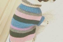 Mary's sweet dress / Ciao sono Mary, e sono una deliziosa Chiwawa bianca e nera. La mia padroncina mi ama molto e, sapendo che noi Chiwawa soffriamo molto il freddo,nei ritagli di tempo confeziona per me deliziosi abitini (tutti pezzi unici) in pura lana merino, cosicchè io non abbia prurito...adorabile, no?
