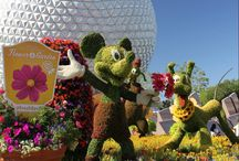 Disney Parks: Top Tips for Families, Travellers Tales and What Not to Miss Out On.