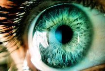 H; Eyes