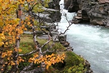 National Parks Lapland Sweden