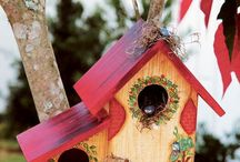 Bird houses / Hobby ideas