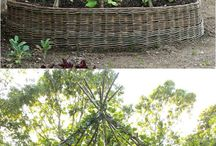 renovation garden