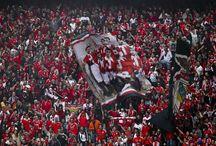 Bancadas Vermelhas / Adeptos do Sport Lisboa e Benfica