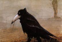 Pasarici / bird