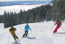 Family Ski Trips