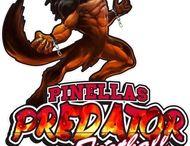 Pinellas Predators Football / Custom Football Helmet Decals, Car Window Decals, Bag Tags & Team Merchandise for Pinellas Predators Team