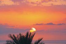 sunset lovers //