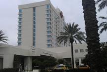 Around Tampa Bay