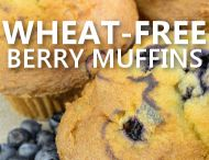 Wheat Belly Diet / Wheat Free