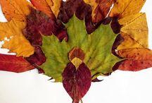 осенние листья дети