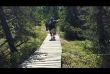 YouTube Travel Videos by Bear Lair Communications
