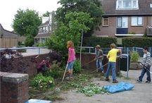 Groen in de wijk of school  / Allerlei initiatieven mbt groen in de wijk of bijv. groen op schoolplein.