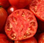 prune tomatoes