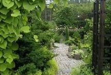 jardin nord