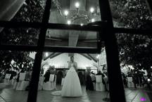 Reportage Matrimonio Napoli - Emilio Verde / Emilio Verde è un fotografo specializzato in Wedding Reportage - In questa bacheca troverai alcuni scatti realizzati per dei servizi  fotografici - www.emilioverde.it