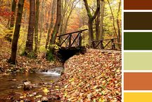Fall Color Trends / From earth to sky, the natural world influences our color inspiration.  As we move into the Fall season, it is easy to find spectacular displays of color.  If you are in need of updating your color scheme or you're just looking for that one accent color to set your space apart, look to nature this season.