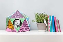 furniture | cats / by Katie Hatch