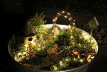 Fairy gardens and miniature gardens / by Della Norman
