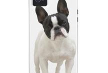 Bulldogge :-)