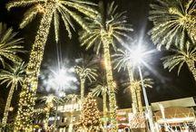 Miami Christmas Lights (mclmiami) on Pinterest
