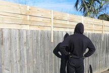Privacy fence idea