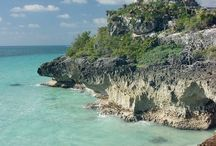 Tulum Ruins / The best of our private tours to Tulum ruins from Playa del Carmen and Cancun
