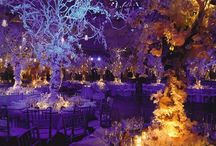 dream wedding / Find dream wedding dresses, enchanting themes and sparkling accessories