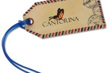 Travel Must Haves! / Promotional products for your traveling customers!