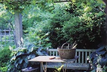 Rural Cornish garden / Images for a rural family garden in North Cornwall