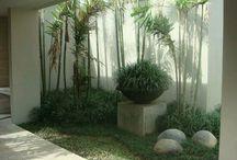 window gardens modern