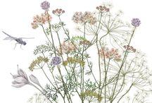 Svadobné kvetinky :-*