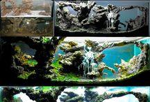 Fish tank DIY
