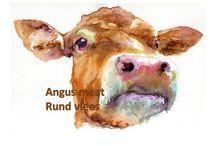 Angus meat , Rund vlees