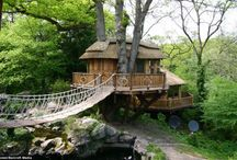 Treehouses / by Furnishing Homes