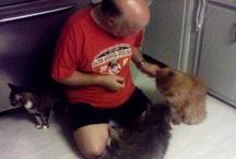 Opus / This is my beloved Opus kitty.