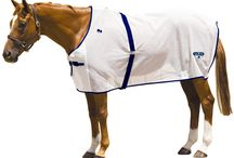 Fly Control / Find more fly control products for your horse on our website www.chicksaddlery.com