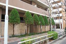 KFG WORKS by gardendeco specialist choice / 花門フラワーゲート 造園工事・植栽管理事例〈伊藤 信宏 監修〉