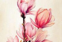 çiçekböcek