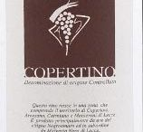 Apollonio Wines
