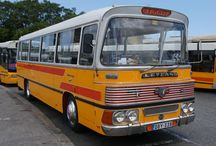 Maltese Buses.
