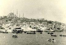 BOTANİK 1935