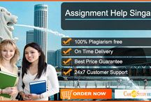 Best Assignment Help Service Provider in Singapore